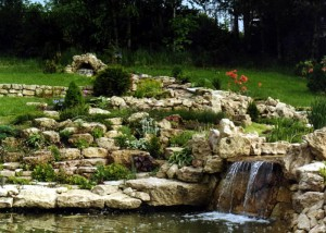 живописный сад с альпинарием
